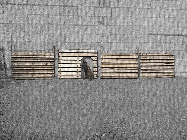 Construction d 39 une niche pour chien de taille moyenne - Niche pour chien avec palette ...