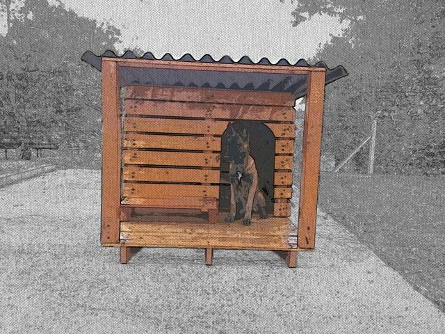 construction d 39 une niche pour chien de taille moyenne forum entretenir son chien berger. Black Bedroom Furniture Sets. Home Design Ideas