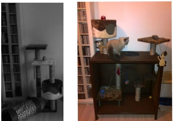 arbre chat fait maison forum entretenir son chat. Black Bedroom Furniture Sets. Home Design Ideas