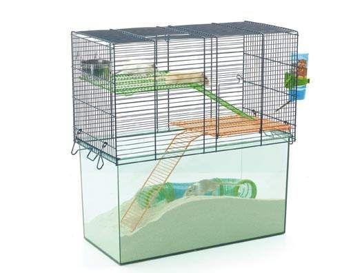 cage pour souris forum souris souris wamiz. Black Bedroom Furniture Sets. Home Design Ideas