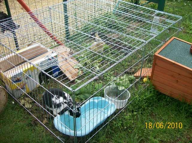 Photos des maisons de nos lapins forum rongeurs wamiz for Clapier lapin fait maison