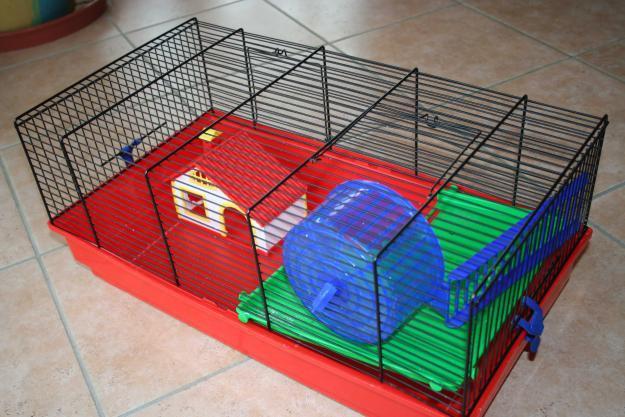 quelle cage choisir pour mon hamster question hamster wamiz. Black Bedroom Furniture Sets. Home Design Ideas