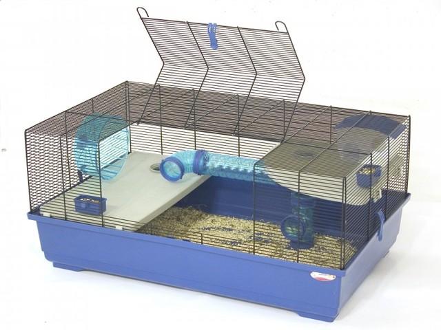 cage hamster russe forum hamster hamster wamiz. Black Bedroom Furniture Sets. Home Design Ideas