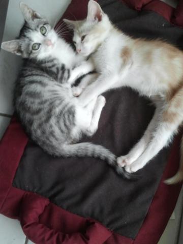 Tao et Cloé