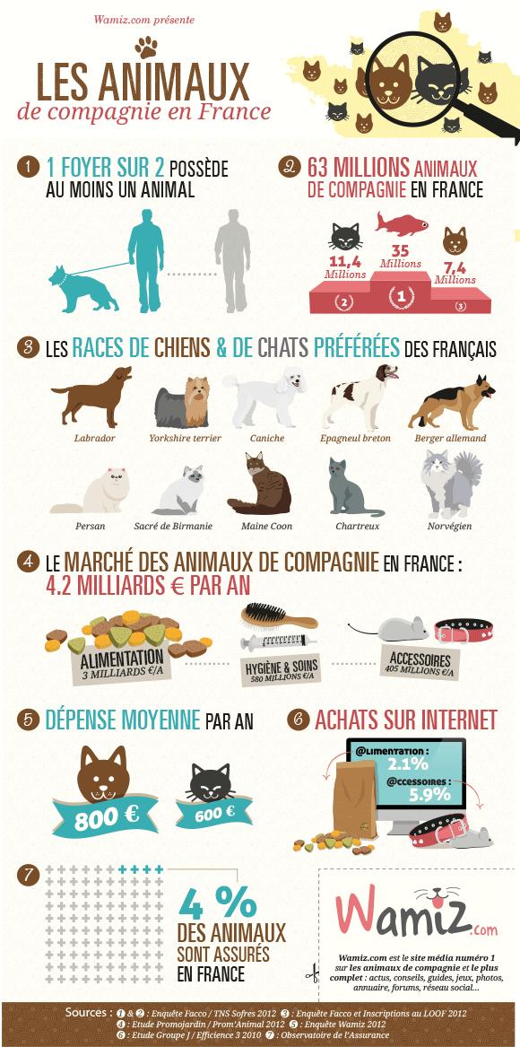 Le marché des animaux de compagnie (Infographie)