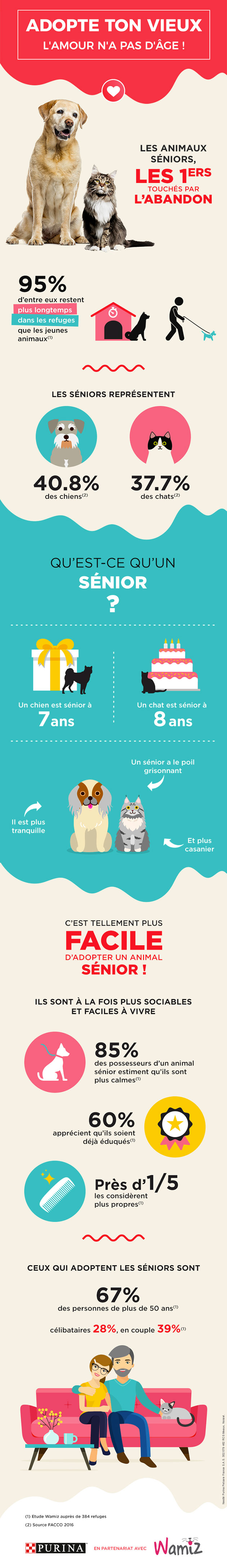 Infographie adopter vieux chien