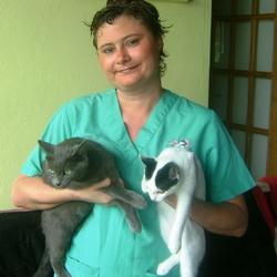 Fiche metier auxiliaire specialise veterinaire