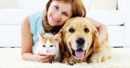 L'assurance animaux, la solution pour payer moins cher