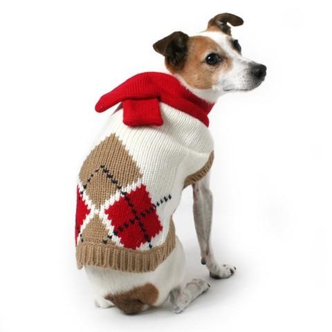 vêtement pull pour chien