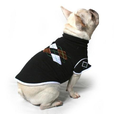 chiens actu des chandails trendy et confortables pour un hiver bien au chaud