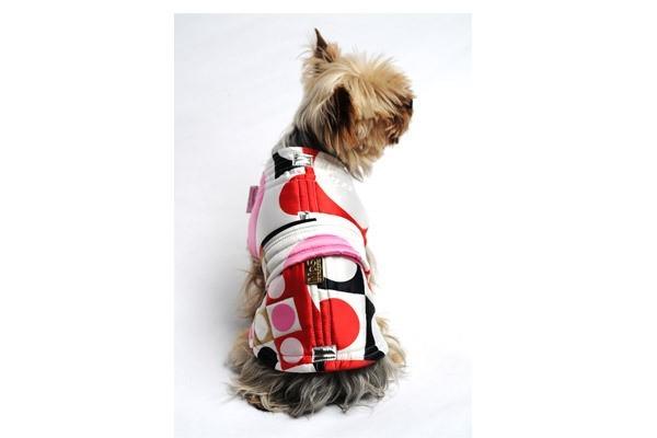 vêtements pour chien
