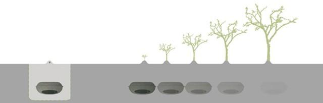 cercueil ecologique belgique