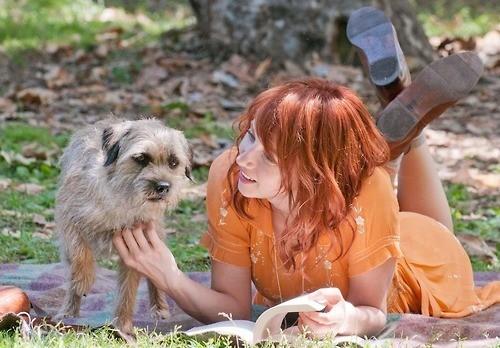les animaux du cinéma récompensés par les pawscars