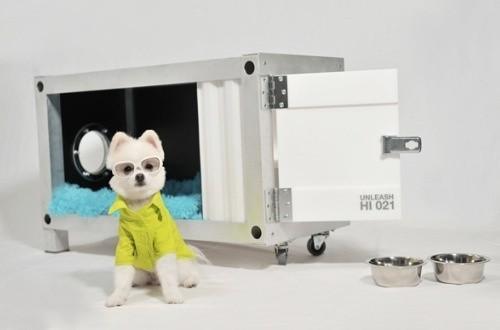 Une niche container très design pour chien très branché !