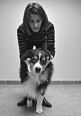 arthrose ostéopathie canine