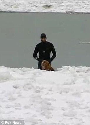 Le sauvetage d'un chien perdu sur le lac michigan