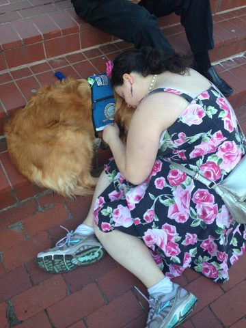Des chiens de thérapie soutiennent les victimes des attentats de Boston