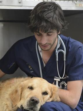 De futurs vétérinaires à suivre au quotidien sur France 4