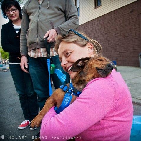 Poignant : les retrouvailles d'un chien abandonné, et de la femme qui l'a sauvé