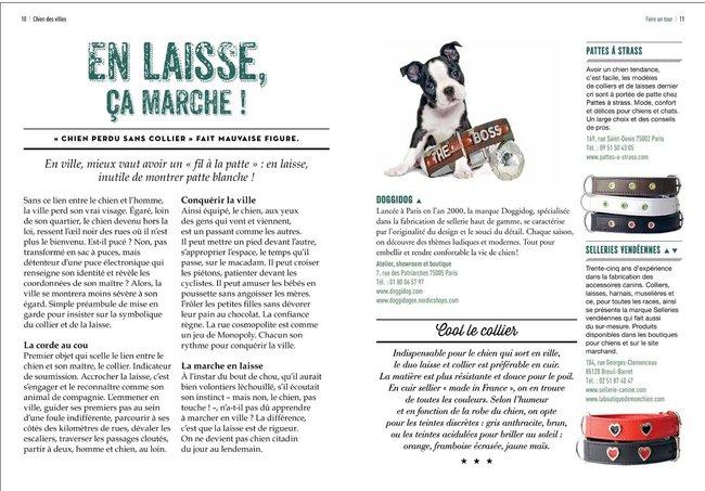 Chien des villes : l'indispensable guide du chien citadin