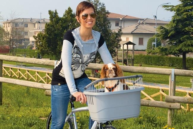 panier chien vélo