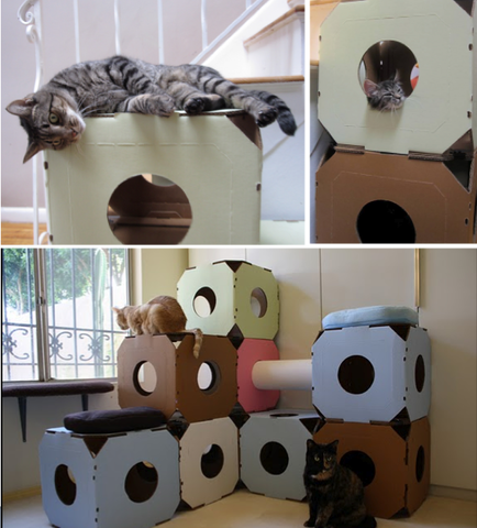 Des cartons drôles et design, et des chats heureux !