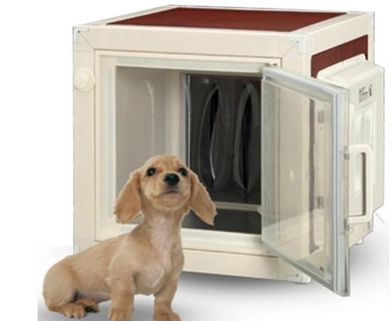 Réfrigérateur pour chiens