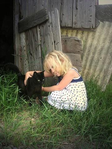 Les chats, les bébés et les enfants : comment les faire vivre ensemble ?