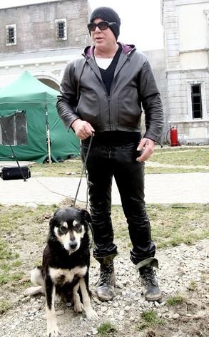 Mickey Rourke vient en aide aux chiens errants de Roumanie