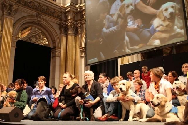 Handi'Chiens célèbre la remise de son 1500ème chien d'assistance