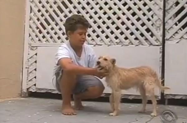 Un enfant se jette sur la route et sauve son chien