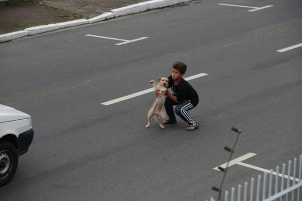 un enfant sauve un chien