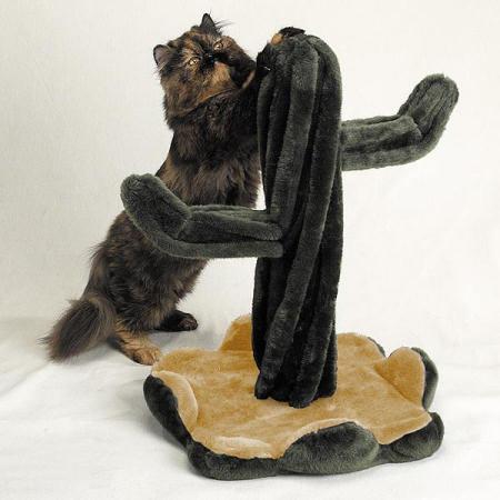 Noël : quel cadeau offrir à son chat ?