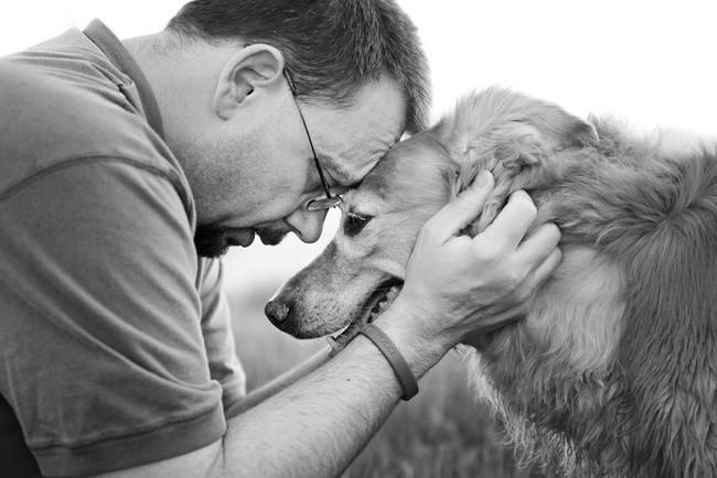 Elle photographie les tendres moments de maîtres et leurs chiens malades