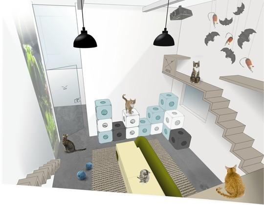 le 1er h tel pour chats ouvrira bient t ses portes paris soci t wamiz. Black Bedroom Furniture Sets. Home Design Ideas