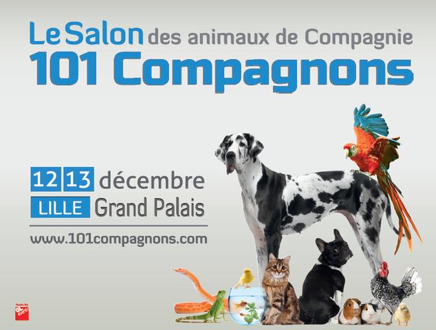 101 compagnons : plus de 3000 animaux à rencontrer les 12 et 13 décembre à Lille !