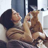 Ce chat mène une double vie, ses maîtresses se disputent sa garde !
