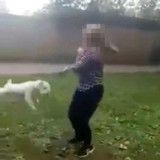 Une vidéo choc montre une ado balançant son chien au bout de sa laisse