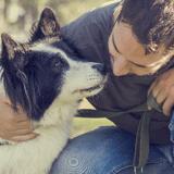 7 erreurs à ne pas commettre avec son chien