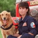 Bretagne, Riley, Trakr…Hommage aux chiens héros du 11 septembre 2001