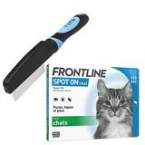 Bon plan : jusqu'à -40 % sur les antiparasitaires pour chat