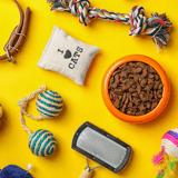 Soldes : dates et bons plans pour vos chiens et chats