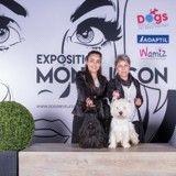 CACIB de Montluçon : voici les chiens de race qui ont été primés !