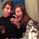 25 chats adeptes du «photobombing» qui vont vous faire mourir de rire