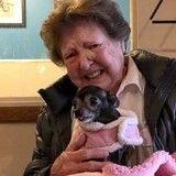 La réaction de cette vieille dame en adoptant son chien risque de vous faire pleurer…