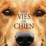 7 «secrets» sur le film Mes Vies de Chien que tout le monde doit savoir