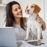 Animaux au bureau : elles emmènent leur chien au travail, trouvent ça génial et témoignent !