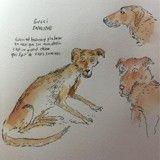Après «Le Chat du rabbin», Joann Sfar dessine des chiens de refuge pour permettre leur adoption