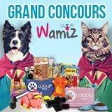 Concours Wamiz : avez-vous gagné un cadeau ?