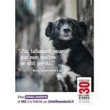 Dans la tête d'un animal abandonné : la nouvelle campagne de 30 millions d'amis